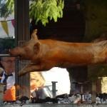 Cochon sur le Barbecue tourne-broche
